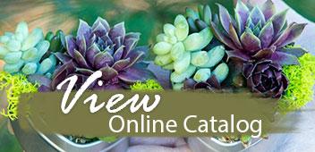 View Online Catalog